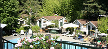 Guerneville Lodging The Definitive Guide