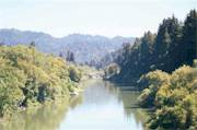 Up the River from the Guerneville Bridge