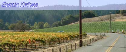 Russian River - Unequaled Northern California Splendor